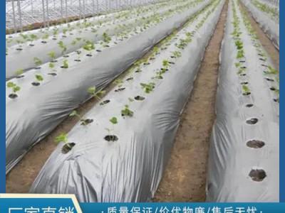 如何辨别农用地膜的真假