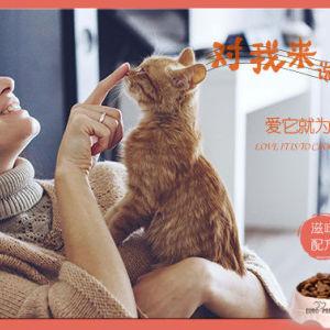 成貓糧2kg 挑嘴貓 寵物貓糧 寵物食品 貓糧 進口貓糧 貓糧批發 歐冠貓糧 糧