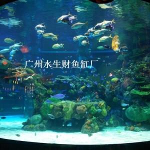 深圳龙华区亚克力鱼缸造景、制作专属类型