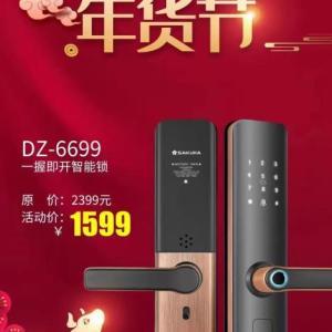 DZ-6699一握即開智能鎖