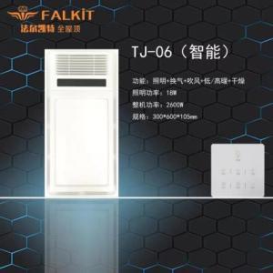 TJ-06(智能)